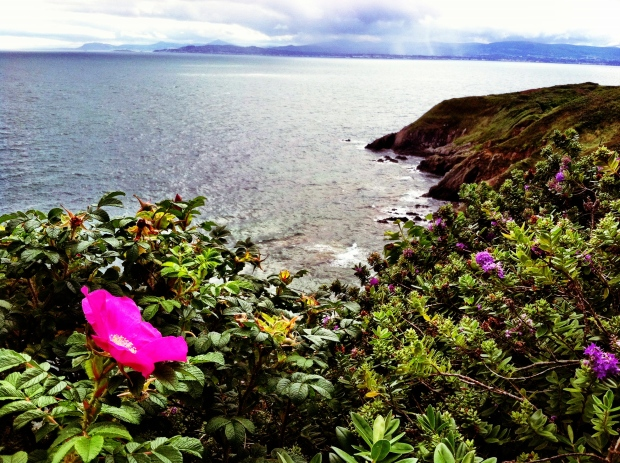 Howth Hike