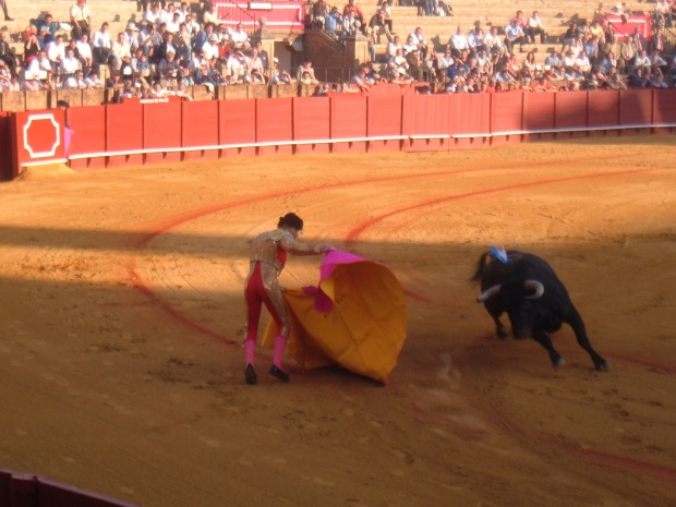 For or against bullfighting, it is quite an experience.